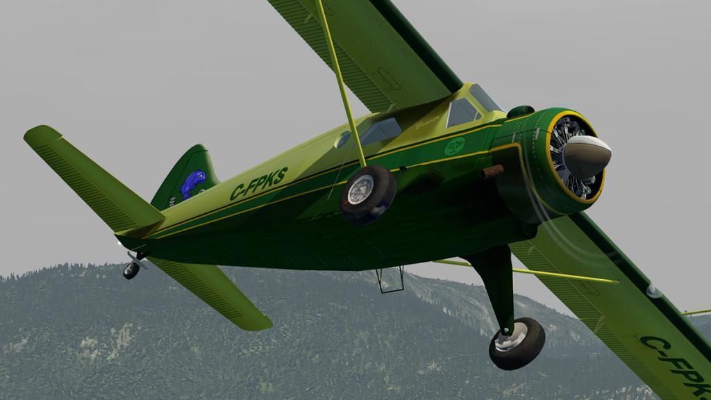 DHC-2 Head 2.jpg