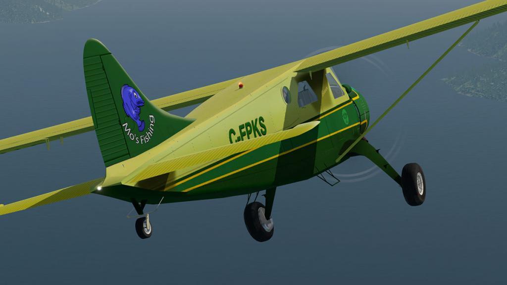DHC-2 Head 3.jpg
