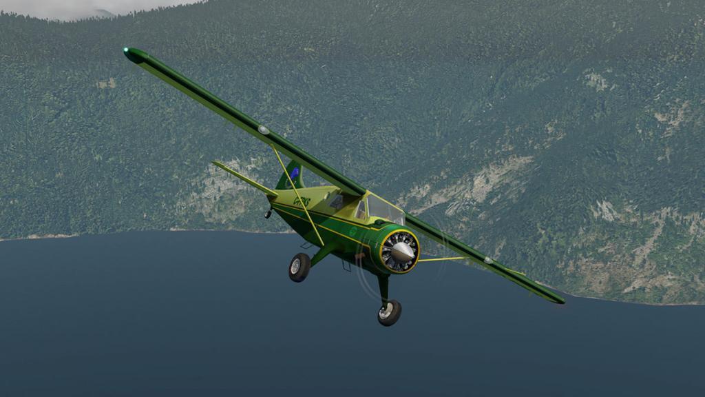 DHC-2 Head 4.jpg