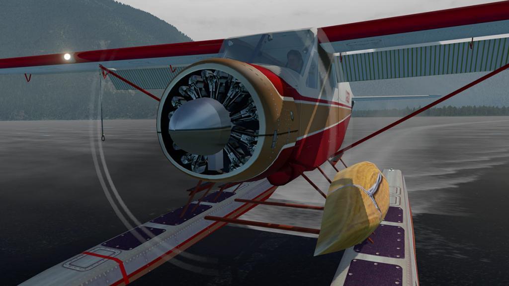 DHC-2 Canoe.jpg