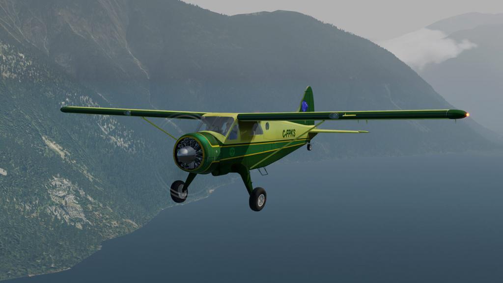 DHC-2 Head 1.jpg