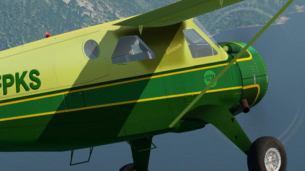 DHC-2 Perform 1.jpg
