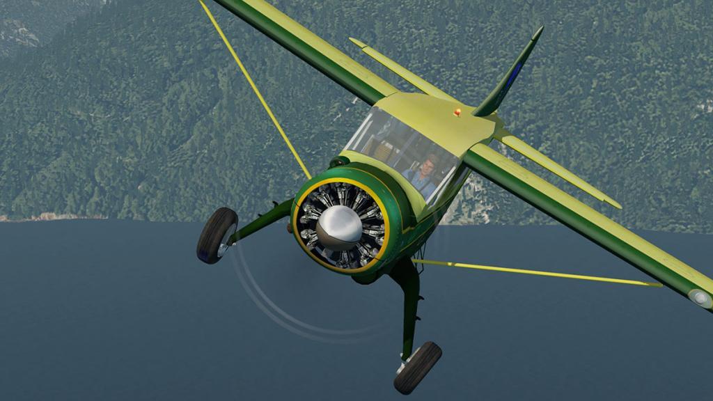 DHC-2 Perform 2.jpg