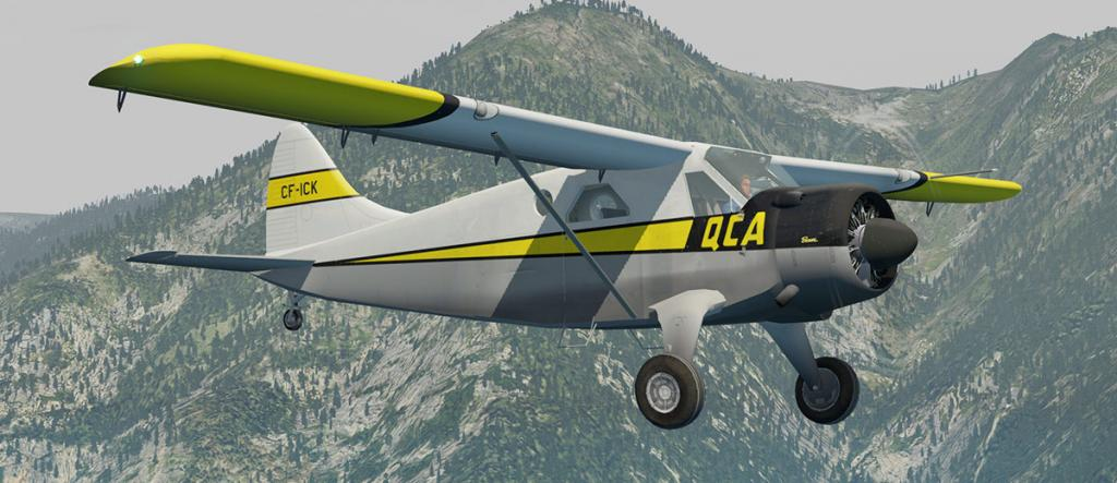 DHC-2 Livery 2.jpg