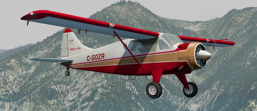 DHC-2 Livery 3.jpg