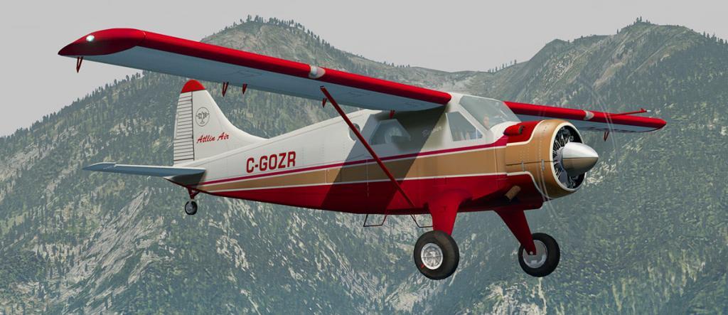 DHC-2 Livery 7.jpg