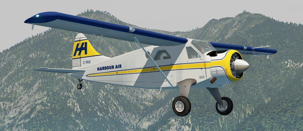 DHC-2 Livery 9.jpg