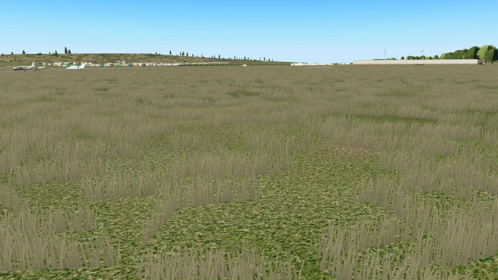 KHAF HMB Grass 1.jpg