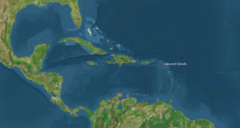 TFFJ Map 1.jpg