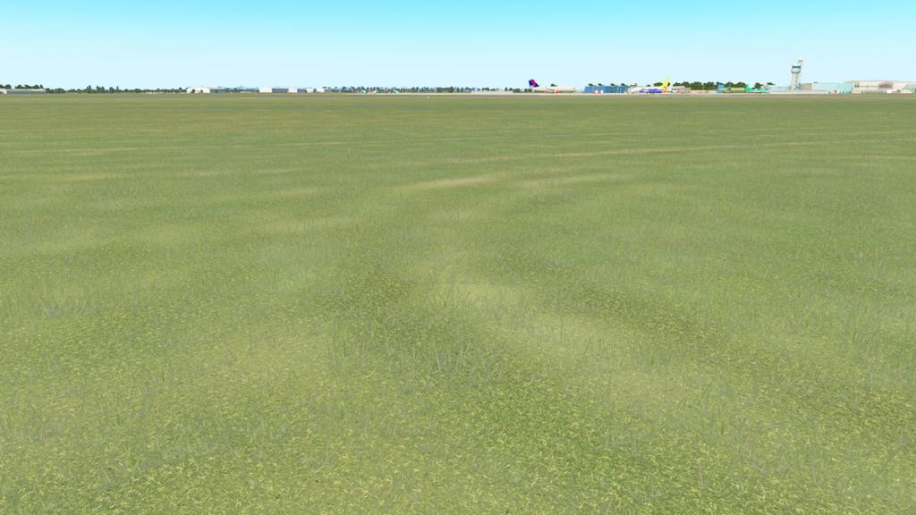 EIDW v2_Grass 1.jpg