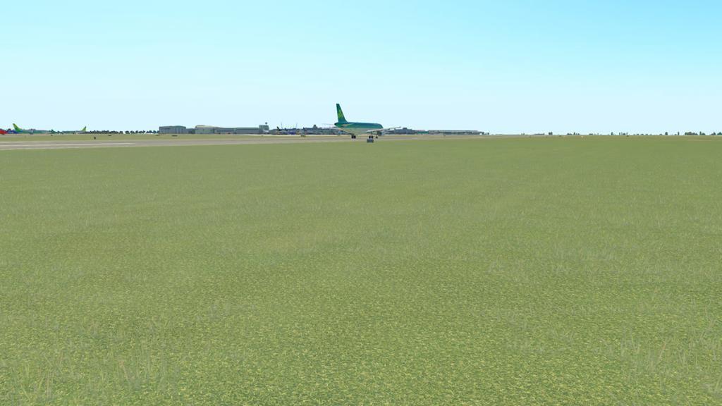 EIDW v2_Grass 2.jpg