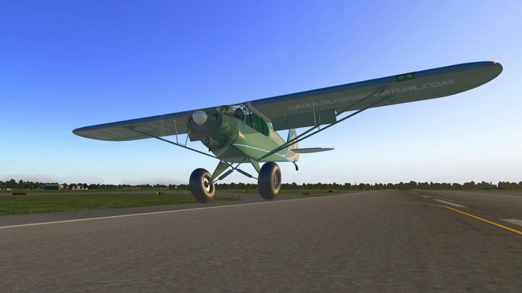 ASDG_Super_Cub_Landing 5.jpg