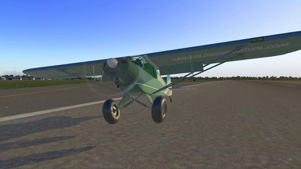 ASDG_Super_Cub_Landing 8.jpg