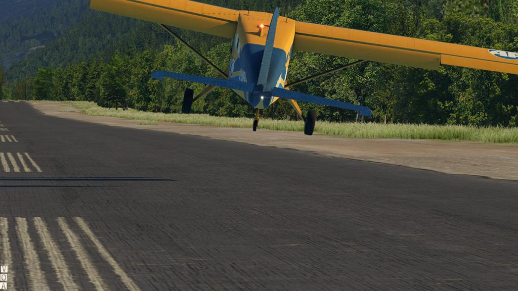 SMS_Beaver XP11_ Approach 3.jpg