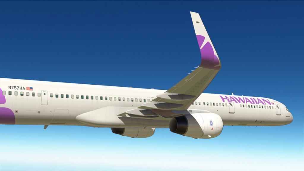 757RR-300 v2.1.3 -300 5.jpg
