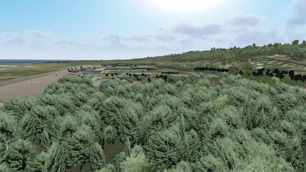 MKJS Trees 1.jpg