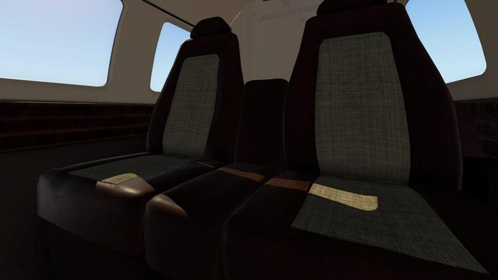 Aerostar 601P_Internal 6.jpg