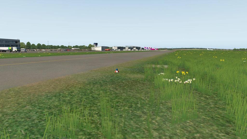 EDLW - Field 1.jpg