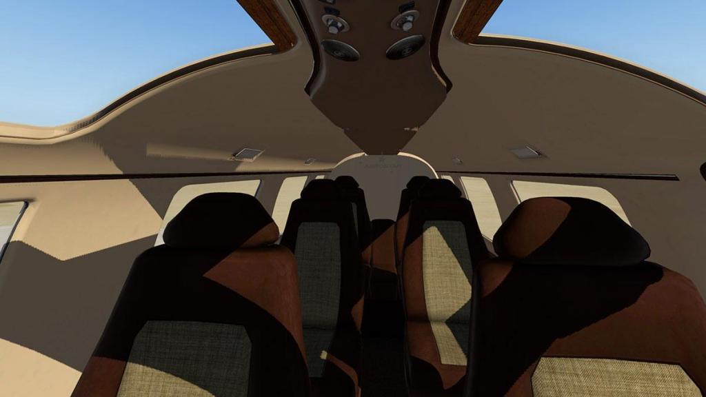 Aerostar 601P_Internal 4.jpg