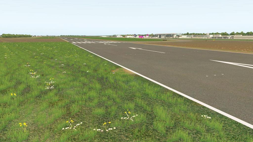 EDLW - Field 3.jpg