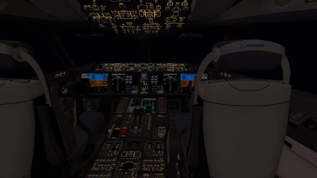 Boeing 787-9_v1.05_Panel brightness 2.jpg