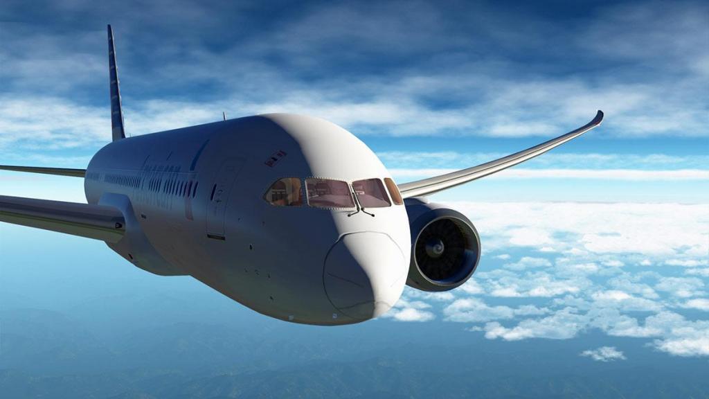 Boeing 787-9_v1,05_Wing 2.jpg