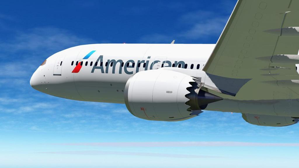 Boeing 787-9_v1,05_ants 4.jpg