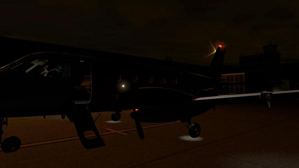 EMB110_XP11_ Lighting 9.jpg