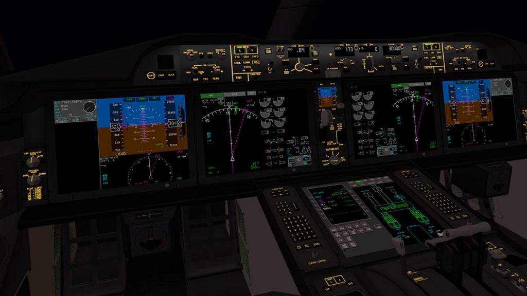 Boeing 787-9_v1.05_Panel brightness 1.jpg