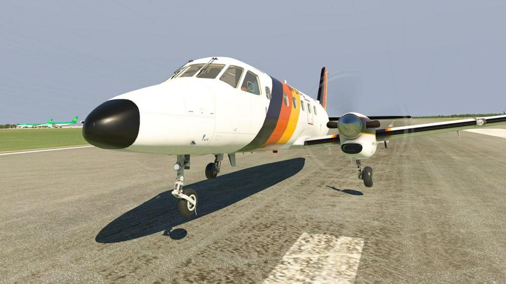 EMB110_XP11_ Flying 5.jpg