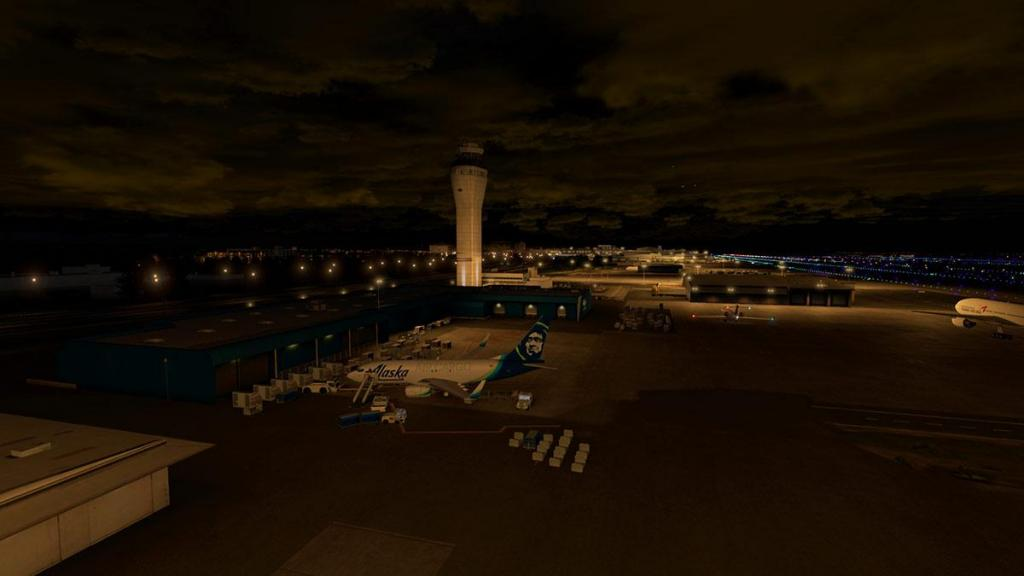 Seattle Airports XP_Lighting KSEA 8.jpg
