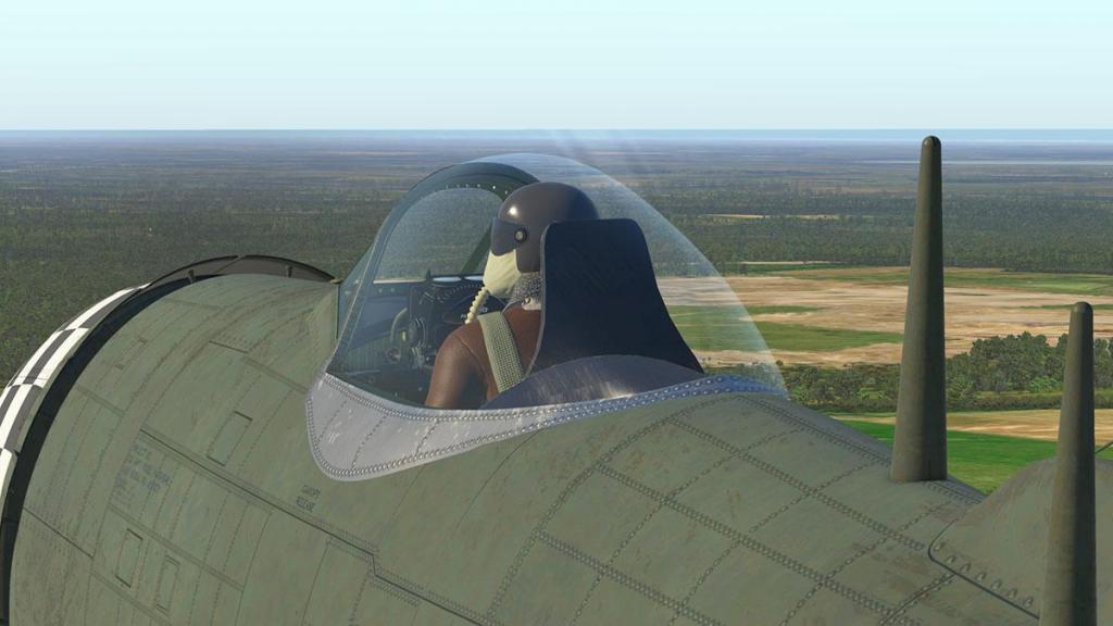 P-47N Thunderbolt_Main Head 10.jpg
