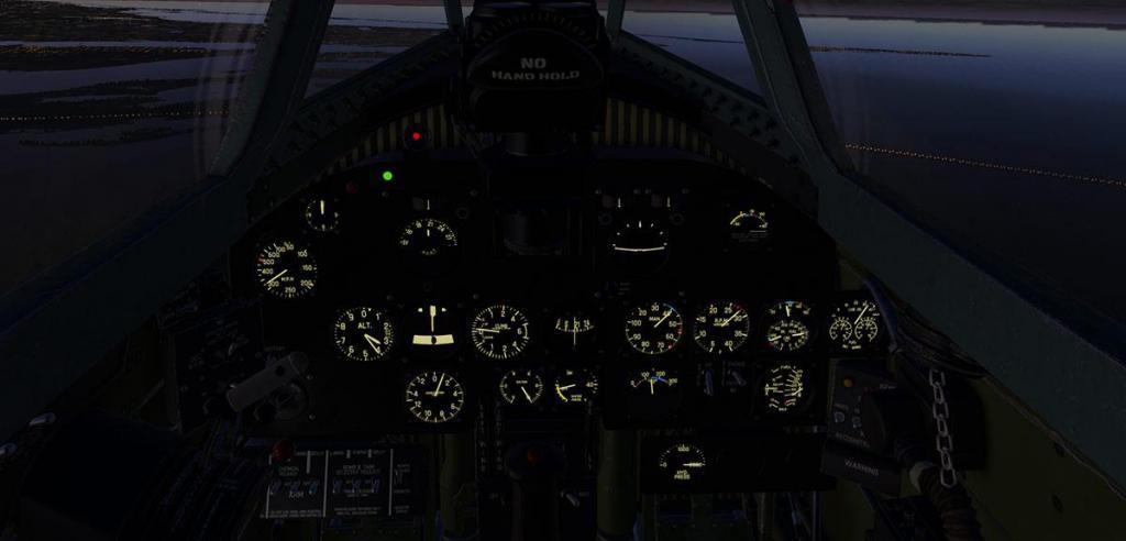 P-47N Thunderbolt_Lighting 1.jpg