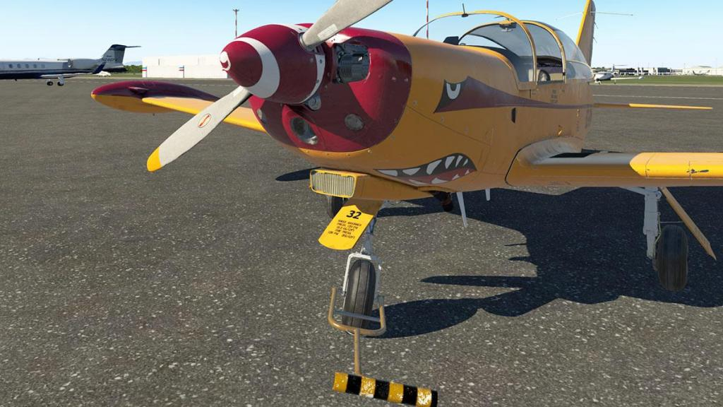 SF-260D_REP 14.jpg