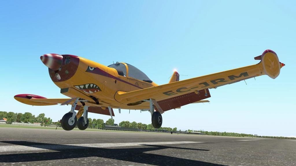 SF-260D_Fly 23.jpg