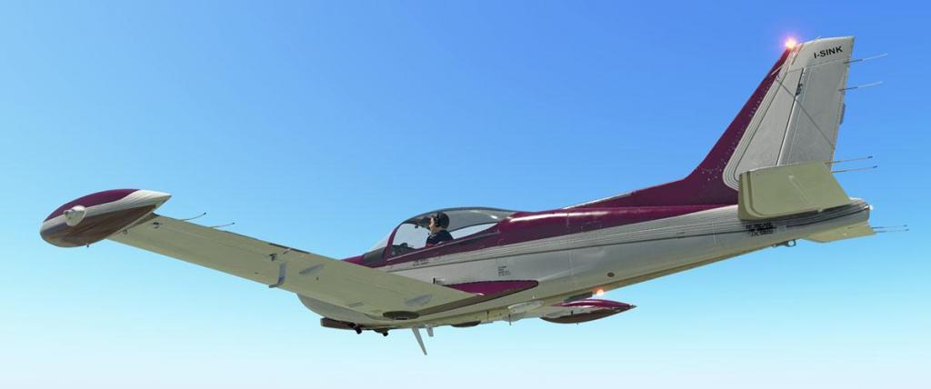 SF-260D_Livery Purple White.jpg