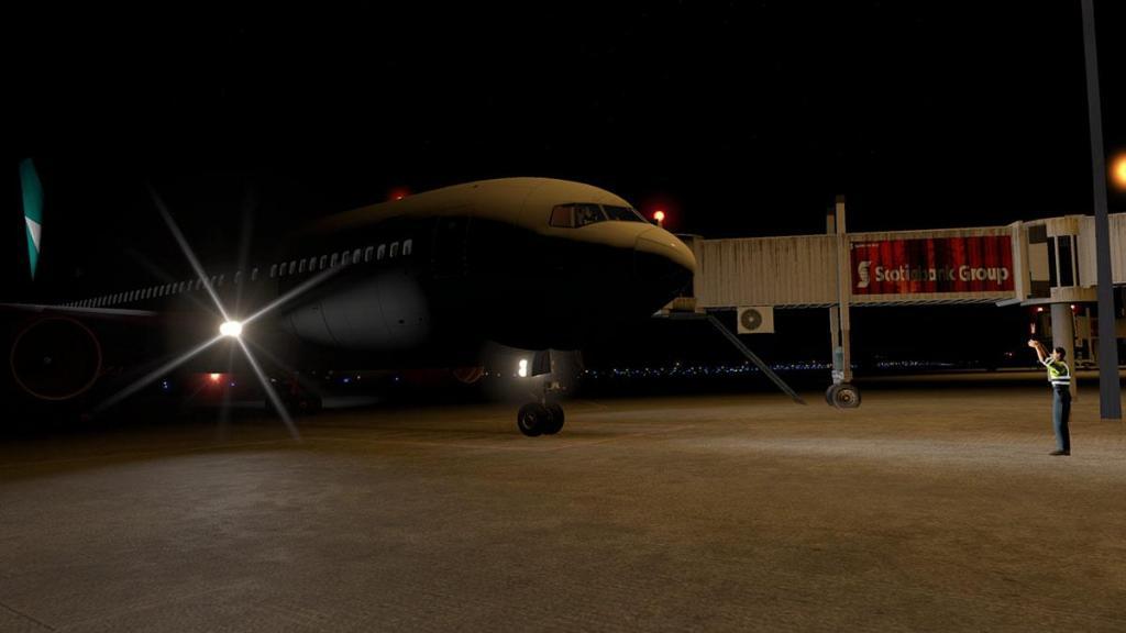 B767 Flight 21.jpg