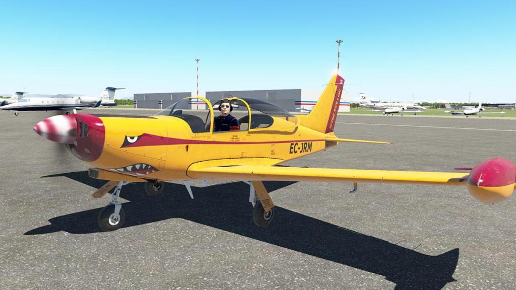 SF-260D_Fly 1.jpg
