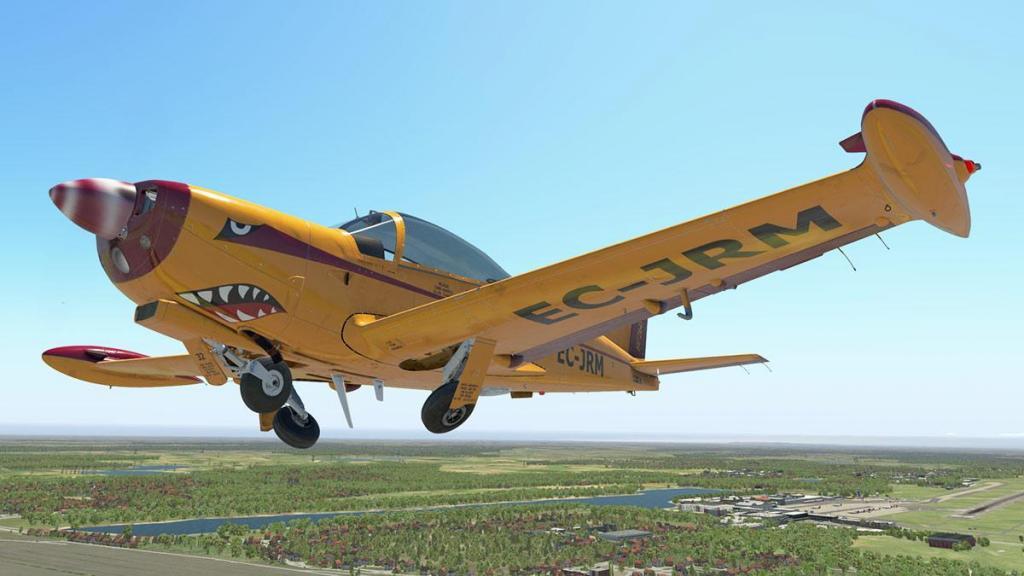 SF-260D_Fly 10.jpg