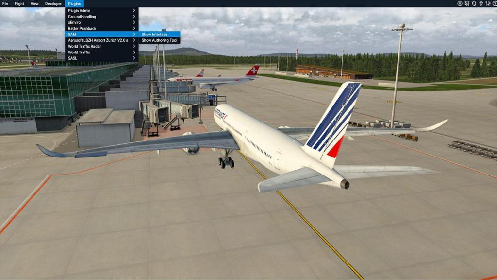 Aerosoft - SAM_LSZH Menu 1.jpg
