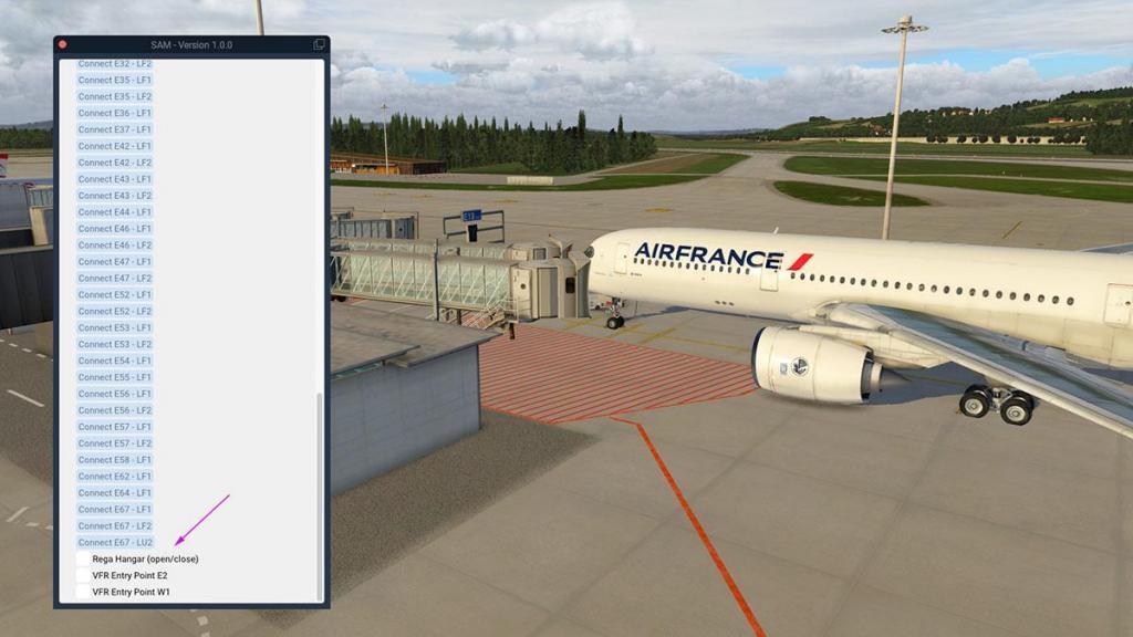 Aerosoft - SAM_LSZH Menu 4.jpg