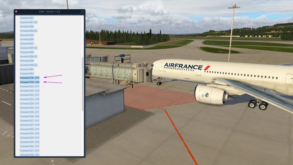 Aerosoft - SAM_LSZH Menu 3.jpg