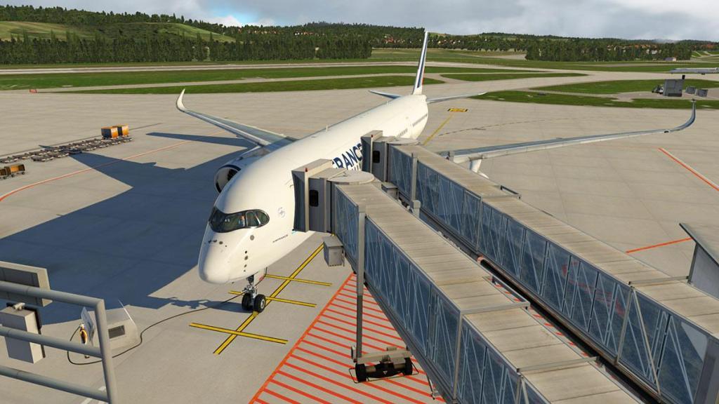 Aerosoft - SAM_LSZH Gate 8.jpg