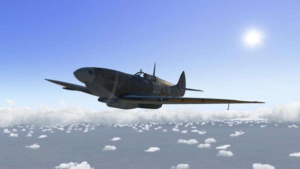 Spitfire L.F.Mk IXc_Head 4.jpg