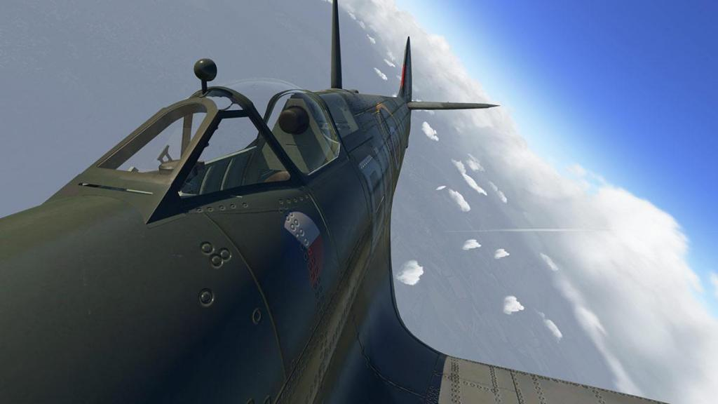 Spitfire L.F.Mk IXc_Head 5.jpg