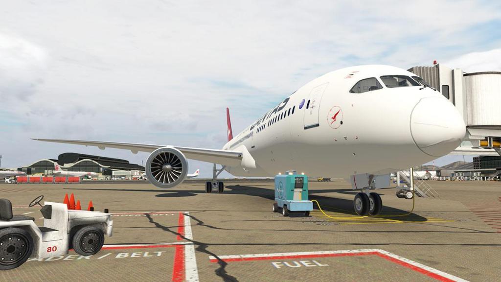 B7879_Aviator_head 1.jpg