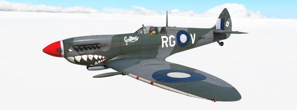 Spitfire L.F.Mk IXc_Livery_Grey Nurse.jpg