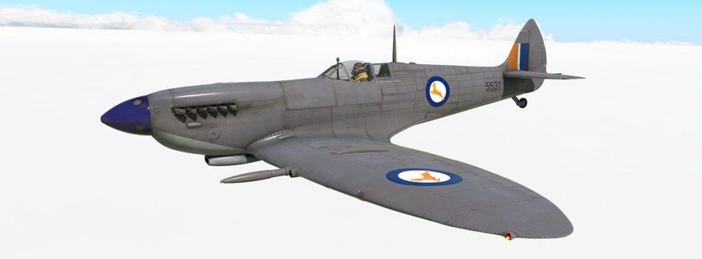Spitfire L.F.Mk IXc_Livery_5531.jpg