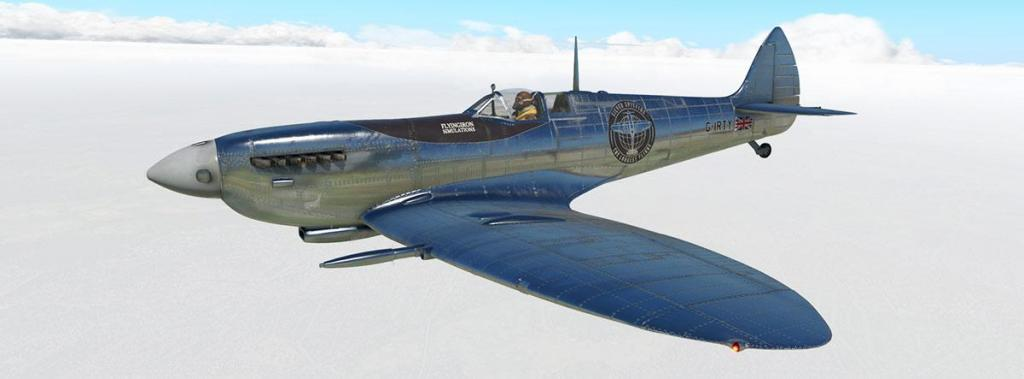 Spitfire L.F.Mk IXc_Livery_Sliver.jpg