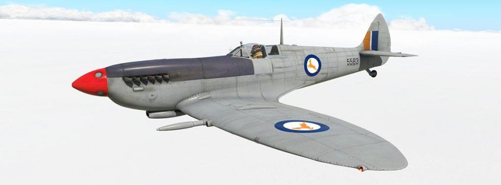 Spitfire L.F.Mk IXc_Livery_5583.jpg